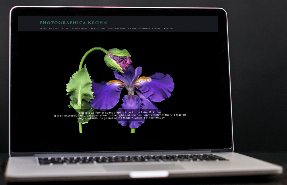 A laptop displaying the PhotoGraphica Krohn website